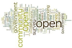 open govt wordle
